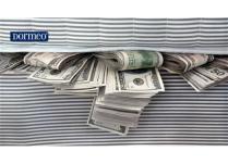 Sa i pa fat ky person fsheh 20 milion dollarë nën Dyshek