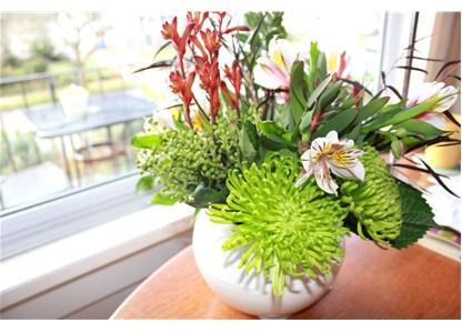 Lulet magjike që pastrojnë ajrin e shtëpisë